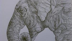 elephant lines